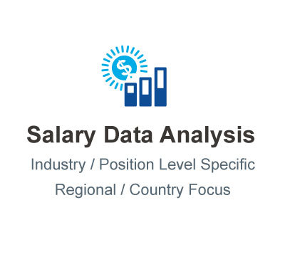 Salary Data Analysis Service