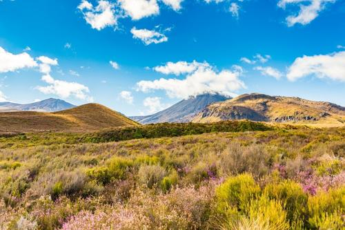 Scenic Adventures in Manawatu / Wanganui, GP and locum medical professionals