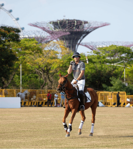 man playing polo in front of gardens by the bay super trees singapore