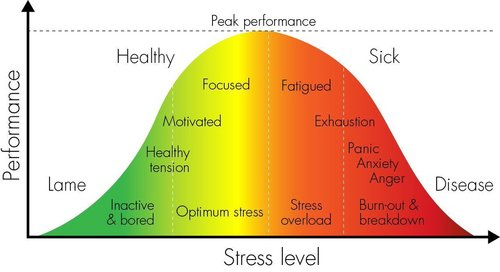 job-stress-performance-burnout