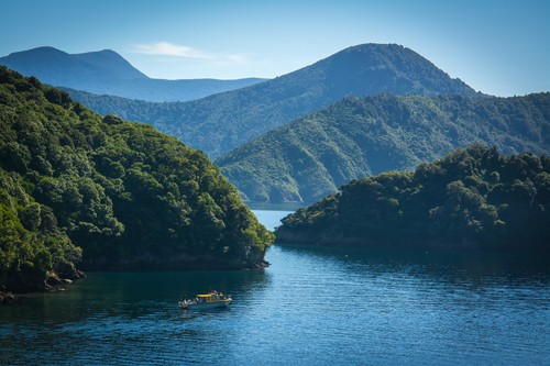 Boat cruising through islands in the Cook Strait