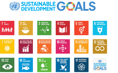 United Nations Sustainable Development Goals (SDG's)